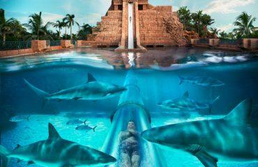 Atlantis Waterpark Dubai