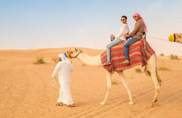 Desert Safari Camel Ride Dubai